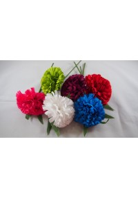 Flor clavellina